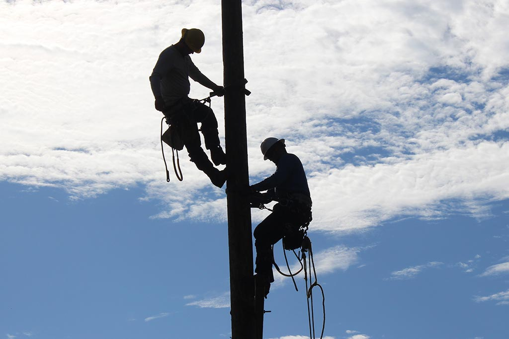 two workers climbing up an electrical pole